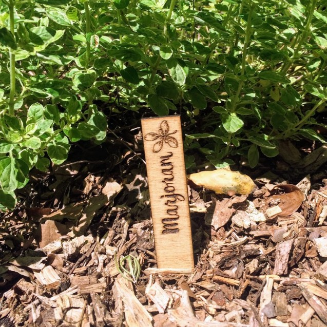 Set of 10 Herb Markers