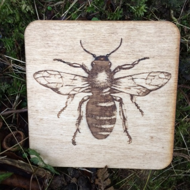 Wooden Bug Coasters